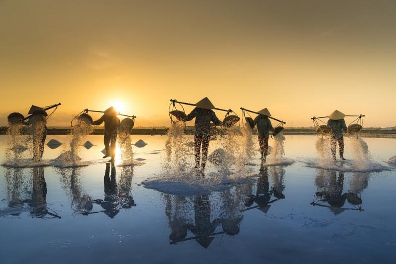 Partir au Vietnam en février