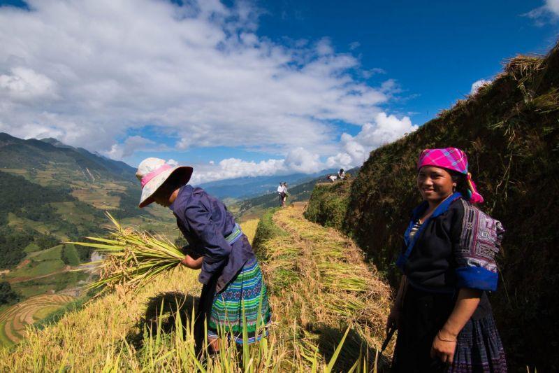 La diversité ethnique au Vietnam