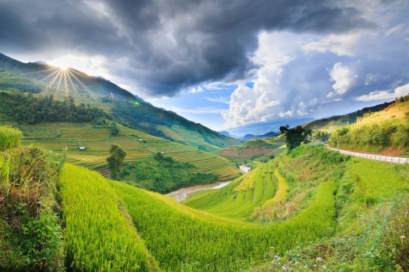 Les rizières en terrestre et la randonnée au Nord-Ouest du Vietnam