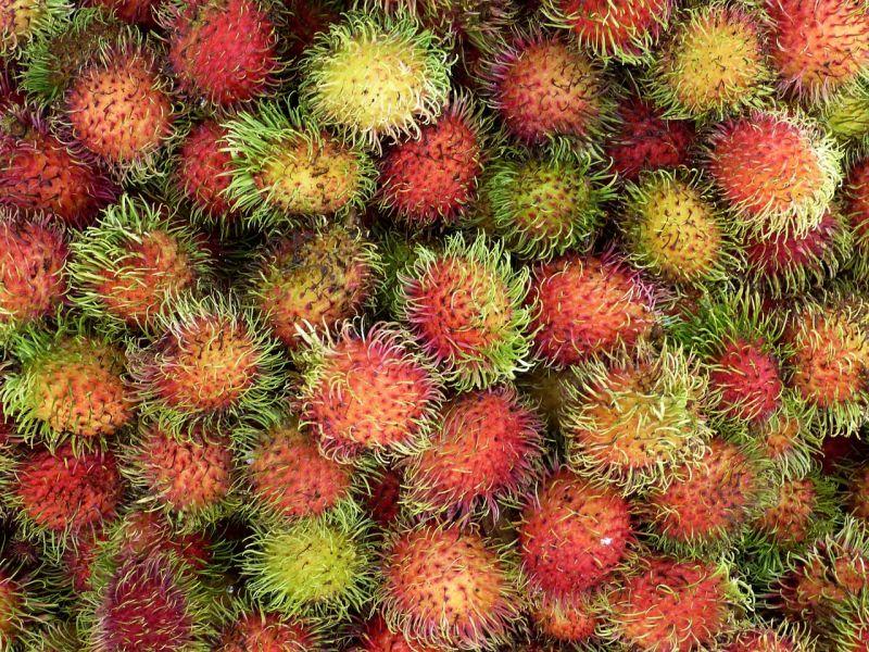 La période favorable pour déguster de délicieux fruits tropicaux