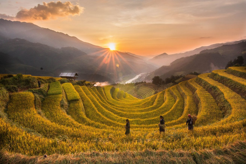 Partir au Vietnam en juillet août