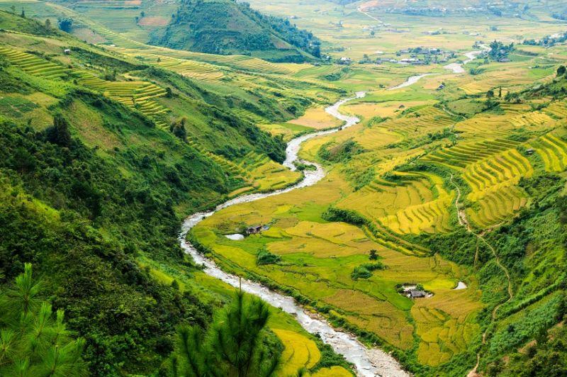 Randonner entre montagnes et rizières dans le Nord-Vietnam