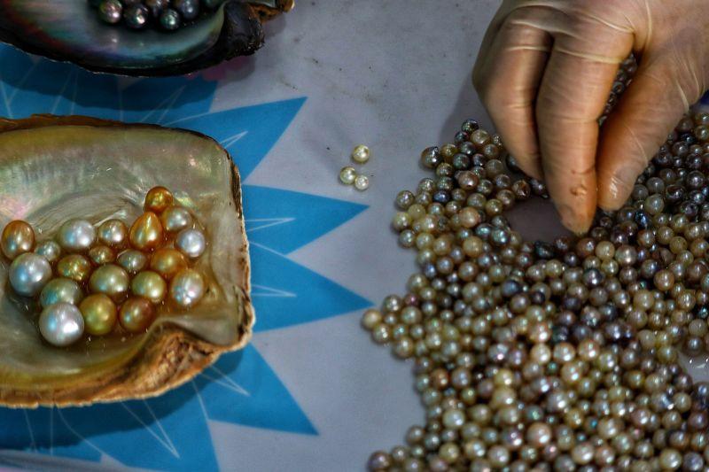 Les perles du Vietnam
